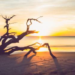 Blog Waarom je jezelf niet moet opgeven