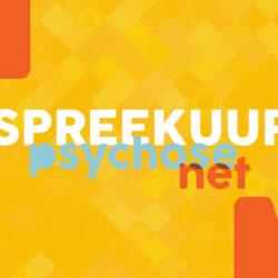 online spreekuur PsychoseNet