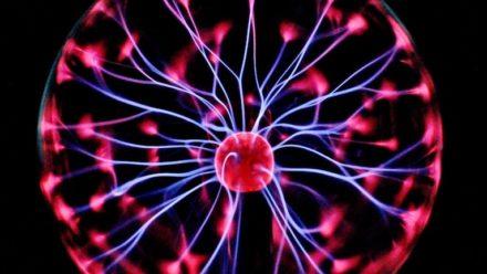 hersenorganoiden