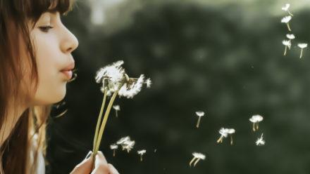 Blog_verlies_lotuslicht