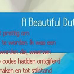 Boek A beautiful Dutch story