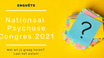 nationaal psychose congres