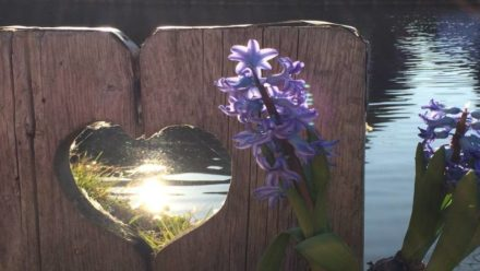 Eenzaamheid in lente tijdens de coronacrsis