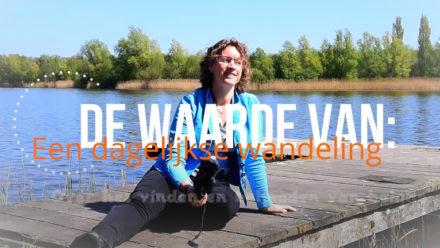 Video de waarde van een dagelijkse wandeling