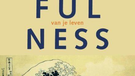 mindfulness-boekomslag
