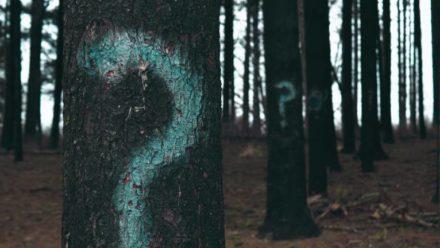 Afbouwen: een aanslag op mijn zelfbeeld