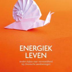 Boek Energiek leven anders kijken naar vermoeidheid