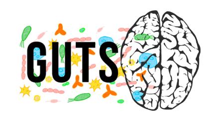 Het GUTS-onderzoek zoekt deelnemers!