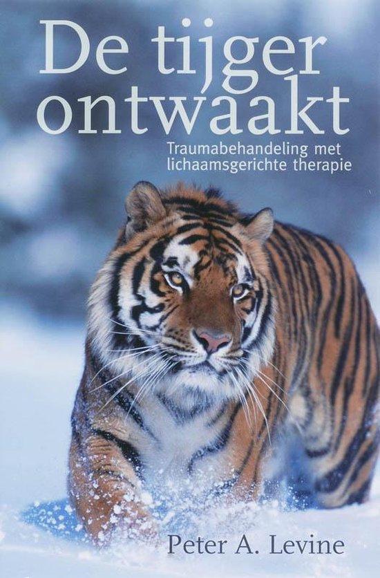 Boek De tijger ontwaakt