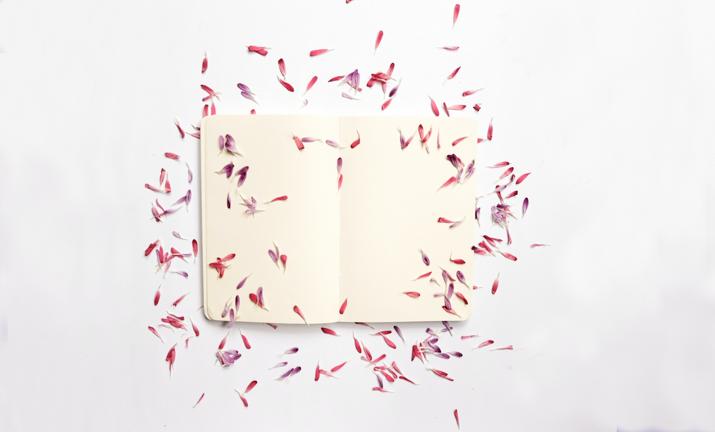 Blog Een stabiele schrijver