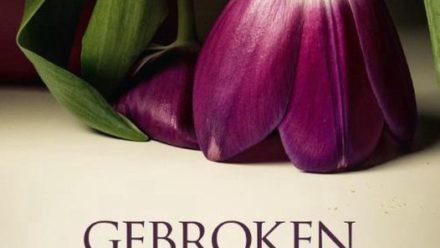 Boek gebroken wilskracht