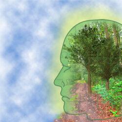 Agenda - Congres Green Mental Health