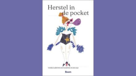 Boek Herstel in de pocket voor clienten en naasten