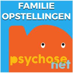 Pagina Familieopstellingen
