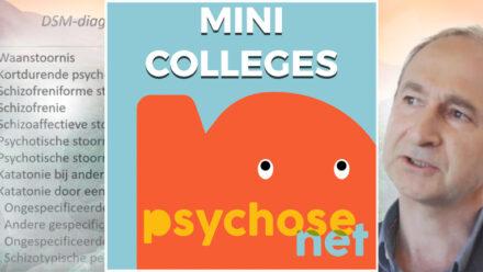 Pagina Mini colleges