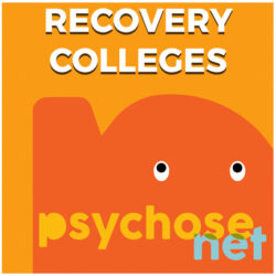 Pagina Recovery Colleges
