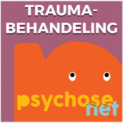 Pagina Traumabehandeling