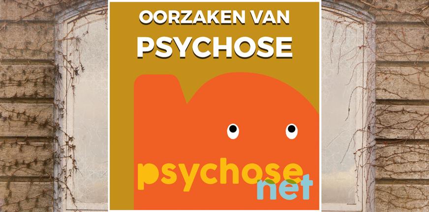 Pagina - Oorzaken van psychose